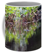 Babcock Wilderness Ranch - Alligator Den Coffee Mug