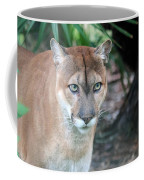 Babcock Wilderness Ranch - Oceola The Panther Gazing Coffee Mug