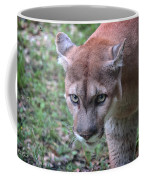 Babcock Wilderness Ranch - Oceola The Panther On The Prowl Coffee Mug