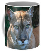 Babcock Wilderness Ranch - Oceola The Panther Pleasantly Peering Coffee Mug
