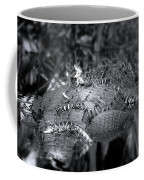 Baby Alligators On Board Coffee Mug