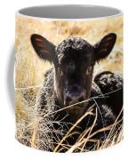 Baby Angus Calf Hideaway Coffee Mug