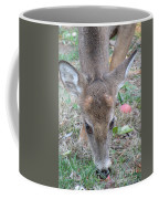 Baby Backyard Button Buck Coffee Mug