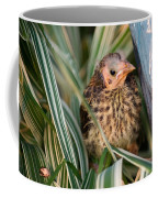Baby Bird Hiding In Grass Coffee Mug