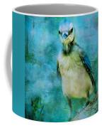 Baby Blue Jay Coffee Mug