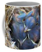 Baby Bluebirds Coffee Mug