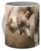 Baby Camels Coffee Mug