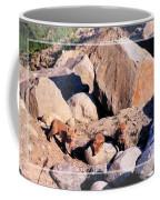 Baby Foxes Coffee Mug