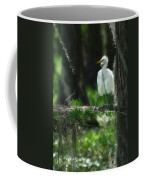 Baby Great Egrets With Nest Coffee Mug