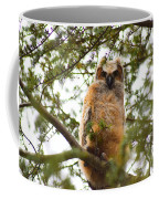 Baby Great Horned Owl Coffee Mug