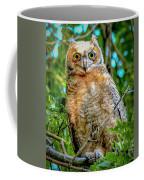 Baby Great Horned Owl Coffee Mug