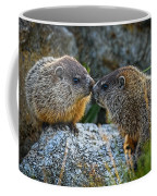 Baby Groundhogs Kissing Coffee Mug by Bob Orsillo