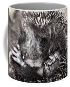 Baby Hedgehog Coffee Mug