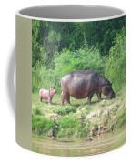 Baby Hippo 1 Coffee Mug