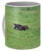 Baby Horse Coffee Mug