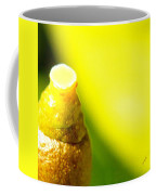 Baby Lemon On Tree Coffee Mug by Ben and Raisa Gertsberg