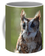Cute Screetch Owl Coffee Mug