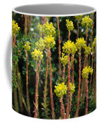 Baby Palm Trees Coffee Mug