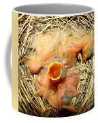 Baby Robins Newly Hatched Coffee Mug