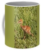 Baby Sandhill Crane Coffee Mug