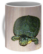 Baby Turtle Looking Up Coffee Mug