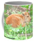 Baby's Home On The Range Coffee Mug