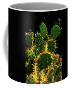 Backlit Cacti Coffee Mug