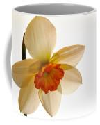 Backlit Jonquil Coffee Mug