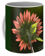 Backlit Sunflower  Coffee Mug