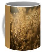 Backlit Wildflower Seeds In Autumn Coffee Mug