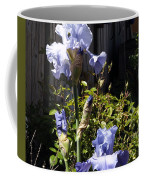 Backyard 1 Coffee Mug
