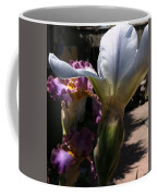 Backyard 4 Coffee Mug