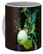 Backyard Garden Series - 2 Apples Coffee Mug