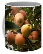 Backyard Garden Series - Apples Cluster Coffee Mug