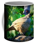 Backyard Garden Series - Quail In A Pear Tree Coffee Mug