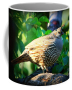 Backyard Garden Series - Quail In A Pear Tree Coffee Mug