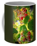 Backyard Garden Series - Sunlight On Raspberries Coffee Mug