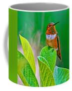Backyard Hummingbird #22 Coffee Mug