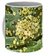 Bacteria On Hops Leaf, Sem Coffee Mug