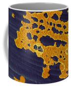 Bacterial Biofilm Coffee Mug