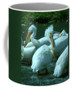 Bad Hair Day At The Pelican Social Gathering  Coffee Mug