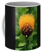 Bad Hair Day Coffee Mug