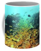 Bahamas Shipwreck Fish Coffee Mug
