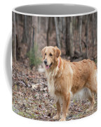Bailee The Golden Coffee Mug