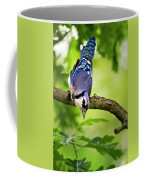 Balanced Blue Jay Coffee Mug