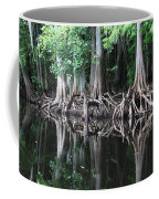 Bald Cypress Trees Along The Withlacoochee River Coffee Mug