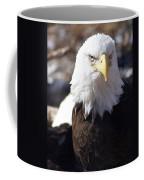 Bald Eagle 1 Coffee Mug