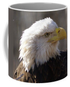 Bald Eagle 3 Coffee Mug