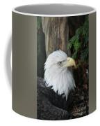 Bald Eagle #8 Coffee Mug