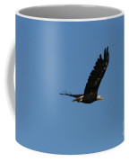 Bald Eagle Flight  Coffee Mug